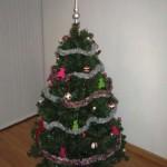 Feliz Navidad y Feliz 2009