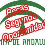 Becas Andalucía segunda oportunidad para el curso 2013 2014