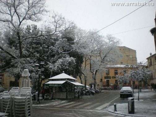 Arboles nevados en Caceres