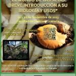 Curso sobre Setas en Granada