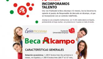 Becas Alcampo