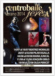 Flamenco Courses Summer 2014