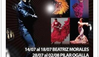 Flamenco Courses Summer 2014