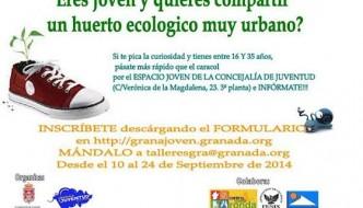 Huertos Urbanos para jóvenes en Granada