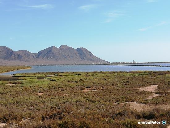 Laguna de las Salinas de cabo de Gata