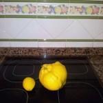 Limon Gigante