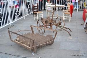 Rulo visto en las Cruces de Granada