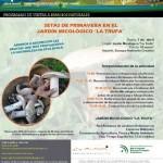 Taller de Setas en Córdoba