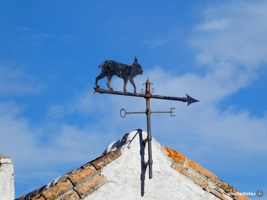 Veleta con figura de Lince en los Montes de Málaga