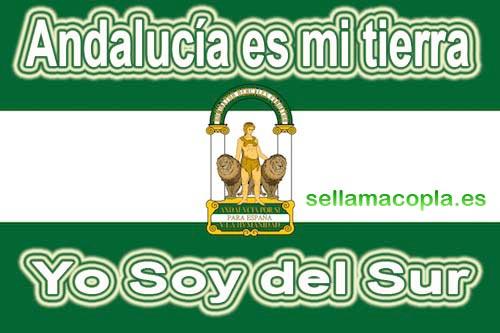 Andalucía es mi tierra, Yo soy del Sur